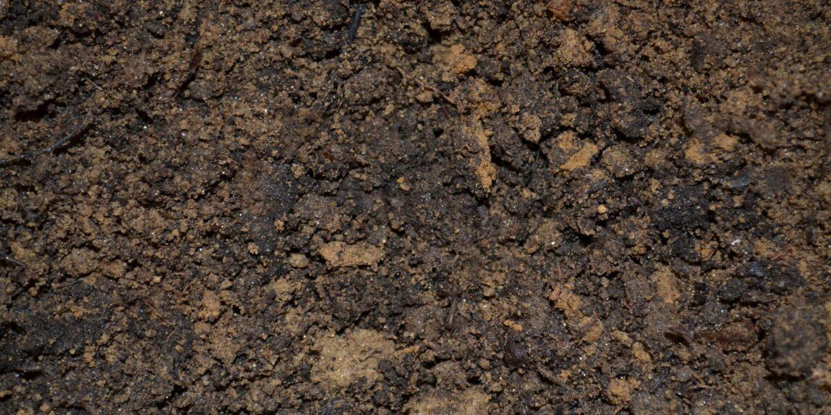 dirt-947985_1920